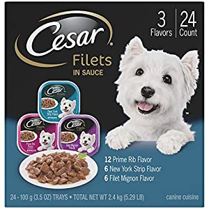 CESAR GOURMET FILETS Multi-Pack (Pack of 24)