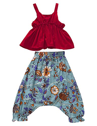 (Toddler Baby Girls Summer Clothes Vest Floral Harem Pants 2PCS National Ethnic Style Outfits Set 2-3T)