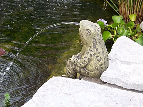 Frog Spitter (Sitting Frog Pond Spitter -stone statue/sculpture-water garden accent- Great Garden Gift Idea!)
