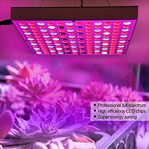 Zongsi 2018 Latest Function New Square Headclip Lamp Succulent Plant Supplementary Light LED Grow Light for Indoor Plants 45w Panel Blue Red Lighting for Hydroponic Greenhouse Horticulture Planting