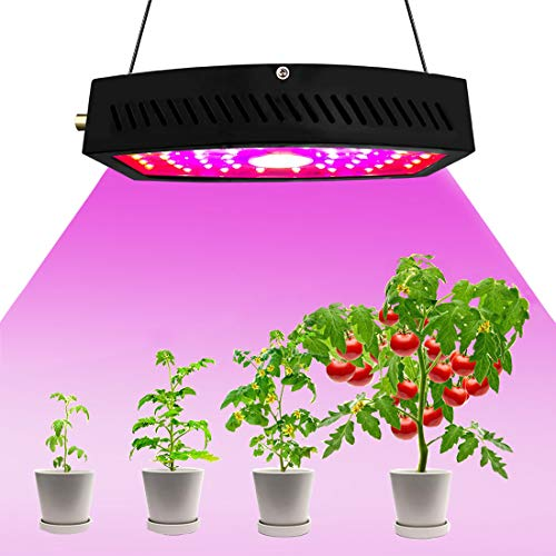BONUSIS LED Grow Light 1100W Full Spectrum Plant Growing Lamp for Greenhouse Planting Hydroponic Indoor Plants Veg and Flower (LED+COB) – Black