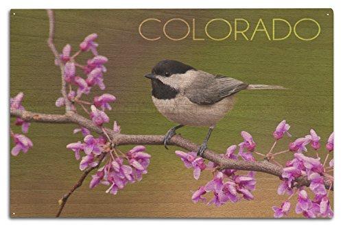 Chickadees Framed - Lantern Press Colorado - Black-Capped Chickadee (10x15 Wood Wall Sign, Wall Decor Ready to Hang)