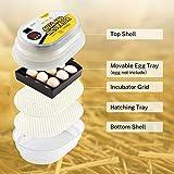 Magicfly Digital Mini Fully Automatic Egg Incubator