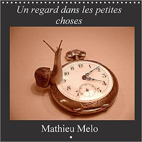 Livres gratuits Un Regard dans les Petites Choses 2017: De l'Avc a la Photographie pdf epub