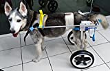 Newlife Mobility Dog Wheelchair for Big Dogs, XL