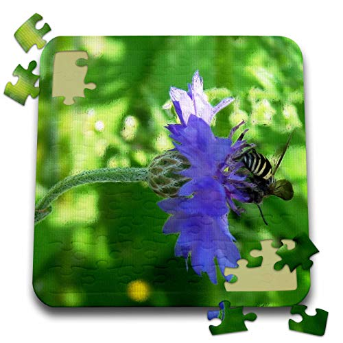 3dRose Cassie Peters Flowers - Bee and Button Flower - 10x10 Inch Puzzle (pzl_296150_2)