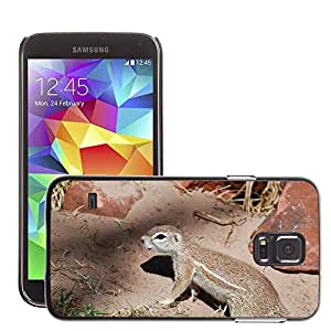 Print Motif Coque de protection Case Cover // M00125719 Roedores Ardilla Animal // Samsung Galaxy S5 S V SV i9600 (Not Fits S5 ACTIVE)