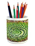 Ambesonne Plant Pencil Pen Holder, National Flower of Lesotho South of Africa Aloe Polyphylla Spinning Spiral Aloe Vera, Printed Ceramic Pencil Pen Holder for Desk Office Accessory, Multicolor