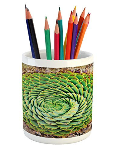 Ambesonne Plant Pencil Pen Holder, National Flower of Lesotho South of Africa Aloe Polyphylla Spinning Spiral Aloe Vera, Printed Ceramic Pencil Pen Holder for Desk Office Accessory, Multicolor by Ambesonne