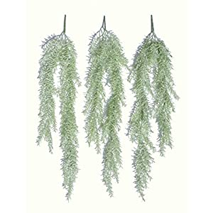 "3 x 28"" Sprengeri Ivies, Artificial Hanging Plants 8"