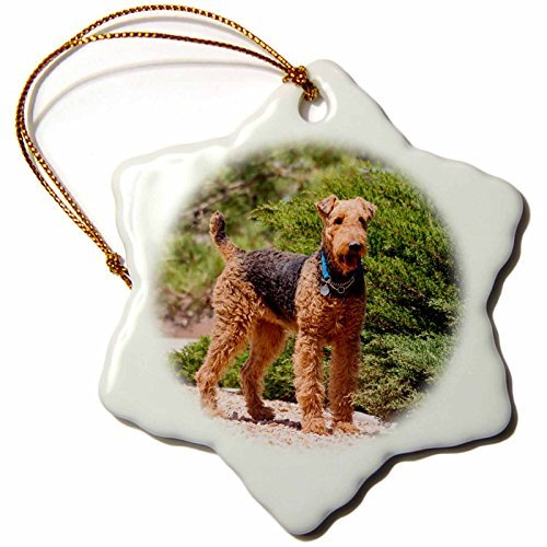Bush Ornament (Vehfa Snowflake Ornament Dogs Airedale Terrier Standing by Juniper Bush inch Snowflake Porcelain Ornament)