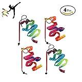 GEORLD Rainbow Dance Ribbons Streamers Rhythmic Gymnastic Ribbon Wands Rods, Baton Twirling, 4 Pieces