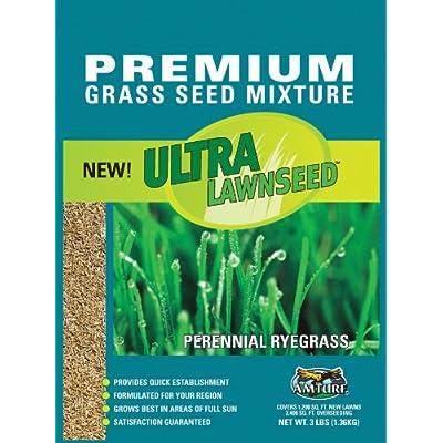 Amturf 77021 Ultra Perennial Rye Grass Seed 3-Pound Bag : Grass Plants : Garden & Outdoor