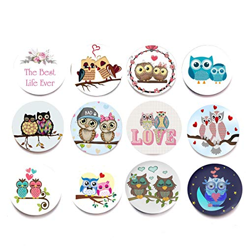 - Cute Owls Glass Animal Fridge Magnets Fall in Love Assorted Colorful Cute Baby Owl Couple Lover Romantic Magnets Letter Heart Refrigerator Magnets for Lover Home Decoration Whiteboard Lockers (12 Pcs)