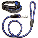 Kamooved Chew Resistant Dog Leash and Heavy Duty Collar – Strong Mountain Rope Leash Set for Medium and Large Breeds – Suitable for Training and Walking in Crowded Areas – Pet Owners Gift
