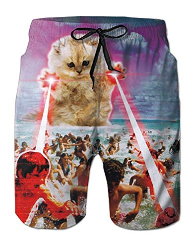 Alistyle Mens Quick Dry Beach Shorts 3D Lightning Cat Print Swim Trunks with Mesh Lining Bathing Suit L
