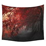WSHINE Sunshine Wall Tapestry Forest Tapestries Trees Leaves Home Decortion College Room Decor Blanket Bedspread Curtains