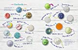 The Slime Workshop: 20 DIY Projects to Make Awesome Slimes―All Borax