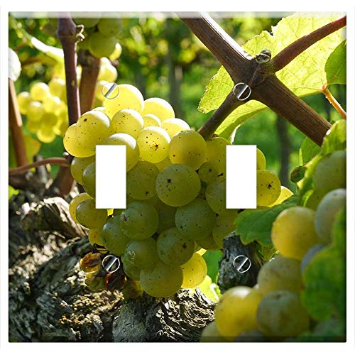 Switch Plate Double Toggle - Grapes Wine Grapes Riesling Wine Food Alcohol ()