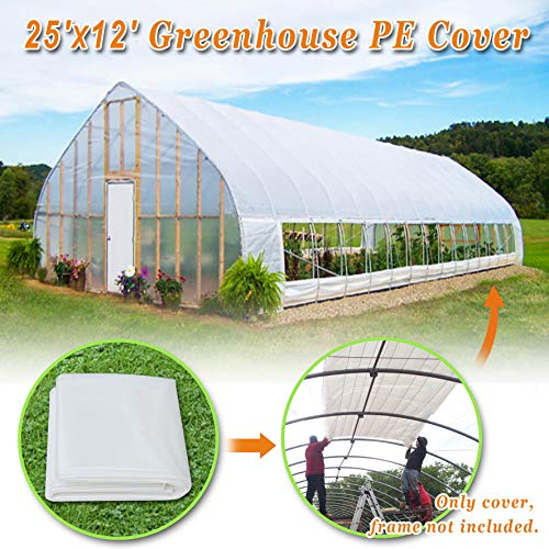Strong Camel Plastic Greenhouse Cover 6mil Thicker Polyethylene Covering 12ft X 25ft by Strong Camel (Image #1)