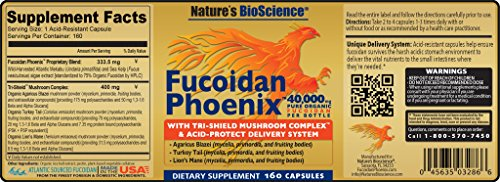 FUCOIDAN Phoenix by Nature's BioScience® : 40,000 mg of Pure Fucoidan + 64,000 mg of Pure Mushroom