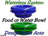 Ant Free Pet Bowls, Pack of 2