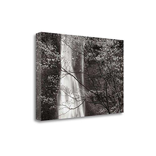 """Double Falls II"" By Alan Majchrowicz, Fine Art Giclee Print on Gallery Wrap Canvas, Ready to Hang from Tangletown Fine Art"