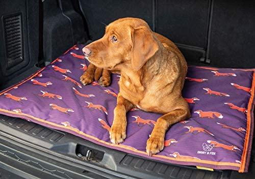 Digby and Fox Fox Print Waterproof Dog Bed Large: Amazon.ca: Health &  Personal Care