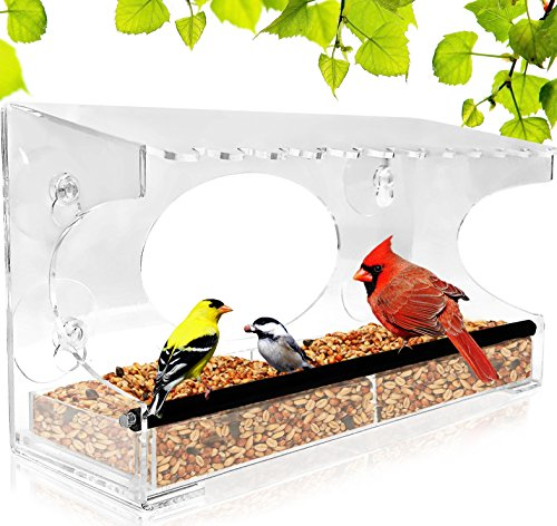 Window Bird Feeder - 2018 Model - Extended Roof - Steel Perch - Sliding Feed Tray Drains Water - See Wild Birds Up Close! - Large - Steel Feed