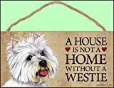 A house is not a home without West Highland White Terrier - 5