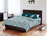 NFL Anthem Philadelphia Eagles Bedding Sheet Set: Full #52377359