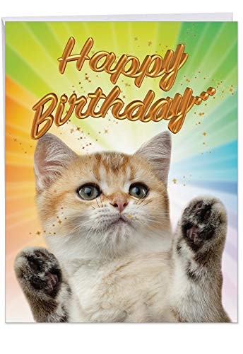 Cat-Sent Greetings Birthday' Birthday Appreciation Card with Envelope 8.5 x 11 Inch - Happy Birthday from The Groovy Cat and Kitten Greeting Card - Animal Birthday Stationery J6112IBDG