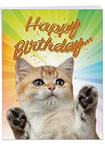 Cat-Sent Greetings Birthday' Birthday Appreciation Card with Envelope