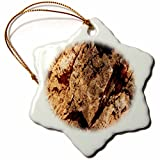 3dRose TDSwhite – Rock Photos - Natural Rock Design - 3 inch Snowflake Porcelain Ornament (orn_281899_1)