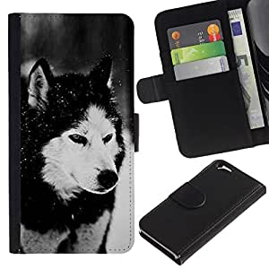 All Phone Most Case / Oferta Especial Cáscara Funda de cuero Monedero Cubierta de proteccion Caso / Wallet Case for Apple Iphone 6 // Dog Siberian Husky Alaskan Malamute Winter Pet Animal