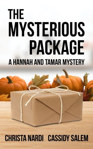 the-mysterious-package-a-hannah-and-tamar-mystery