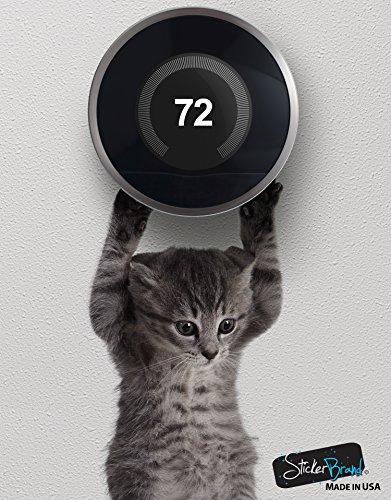 Cat decal cute hanging baby kitten door sticker #6067A