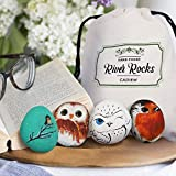 Cadiem River Rocks for Painting - Stones for Rock