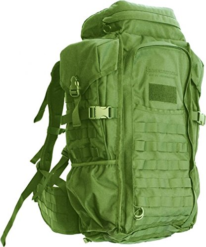 Eberlestock HalfTrack Military Pack w/Tunnel Pockets & D-Rings, Military Green F3MJ by Eberlestock