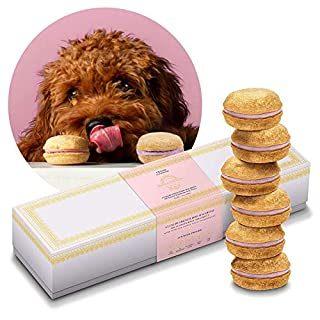 Bonne et Filou Dog Macarons | Luxury Dog Treats Handmade in The USA | Healthy and Delicious Gourmet Dog Snack with All-Natural Ingredients for Dogs (Strawberry)