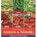 De Ree Lattuga Pomodoro Rio Roma & Moneymaker Rucola Verdure / Frutti 405 Semi L/T