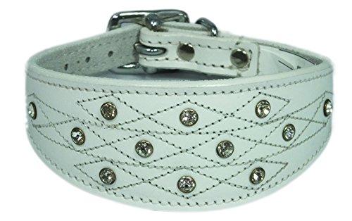 305-356-cm-Blanc-Lvrier-Whippet-Collier-en-cuir-avec-coutures-Design
