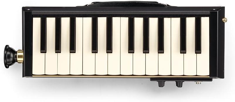 HAMMOND BB PRO-24B Bass Melodica: Amazon.es: Instrumentos ...