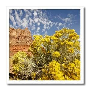 ht_94891_3 Danita Delimont - Utah - Utah, red rock near Moab, rabbitbrush - US45 RSP0027 - Rob Sheppard - Iron on Heat Transfers - 10x10 Iron on Heat Transfer for White Material