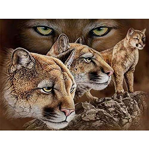 DIY 5D Diamond Painting by Number Kit Full Drill Round Rhinestone Embroidery Pictures for Decoration Three Leopard Families 15.7x11.8in 1 Pack by Juntop