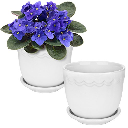 White Ceramic 4-Inch Scallop Design Succulent Planter Pots with Attached Saucers, Set of - Bud Vase Scalloped