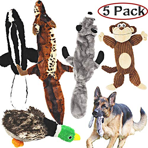 Jalousie 5 Pack Dog Squeaky Toys Three no Stuffing Toy and Two Plush with Stuffing for Small Medium Large Dog Pets ()