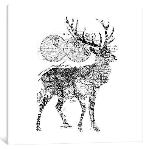 """iCanvas Deer Wanderlust, Square by Tobias Fonseca Canvas Print 18"""" x 18"""" x 0.75"""" from iCanvasART"""