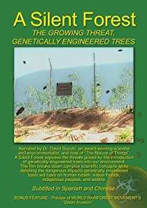 A Silent Forest -The Growing Threat Genetically Engineered Trees