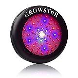 UFO Led Grow Light, Growstar 300W Full Spectrum Plant Light with Cree COB for Indoor Greenhouse Garden (300 watt)